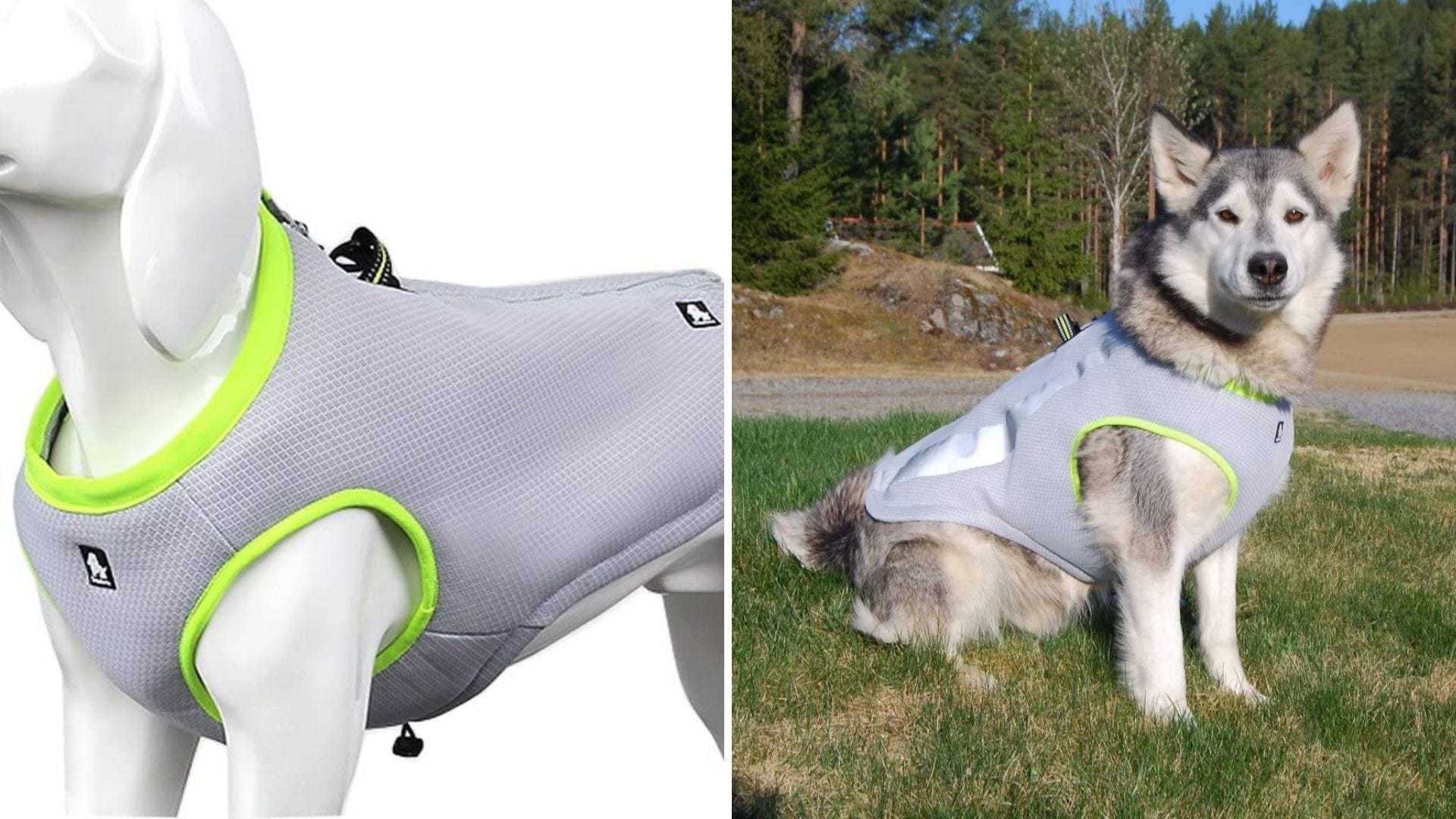 A dog mannequin wears a gray and green vest and a dog wears the same vest.
