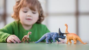 The Best Toys for Kids Who Love Dinosaurs