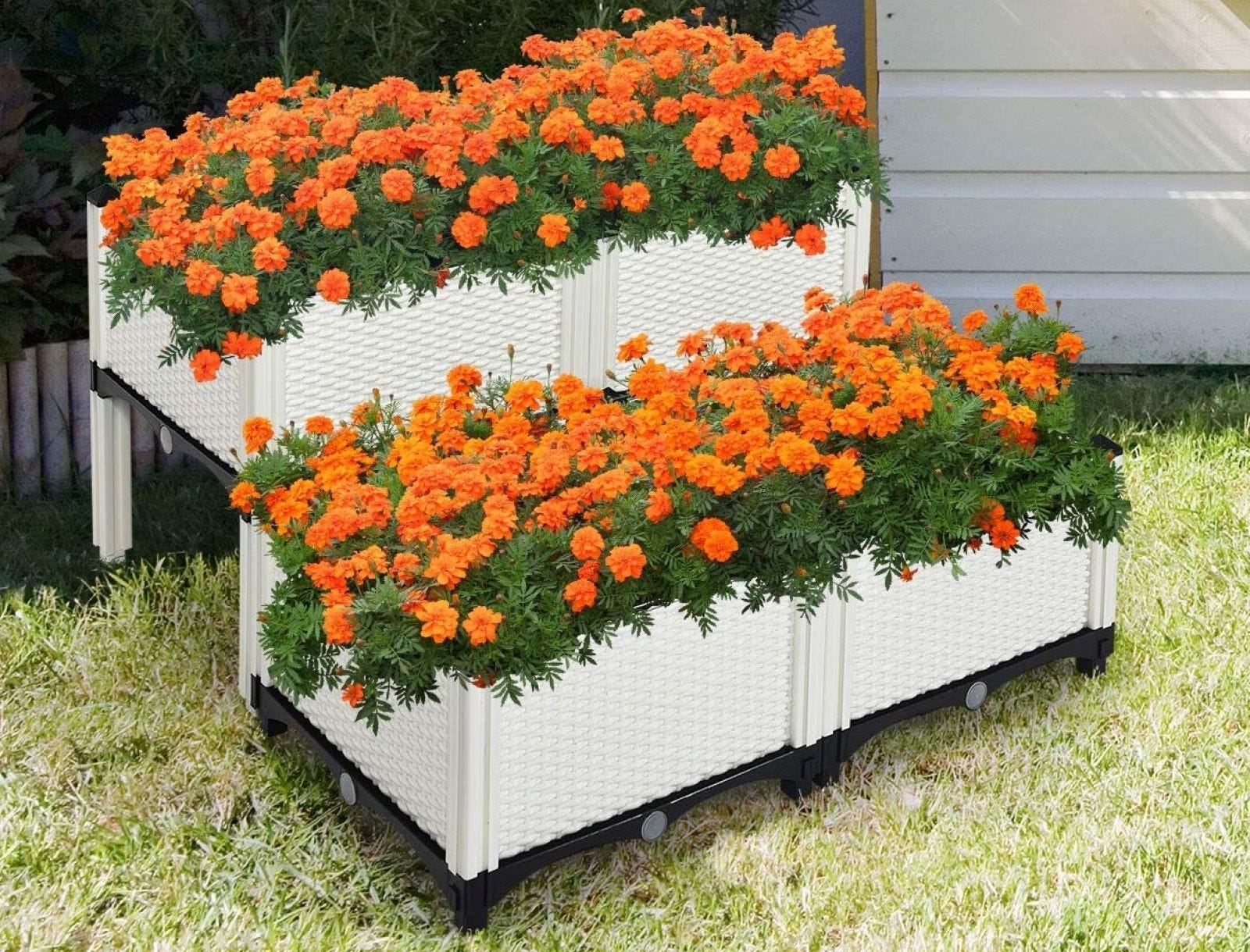 The Giantex set of four Raised Garden Bed with orange flowers.