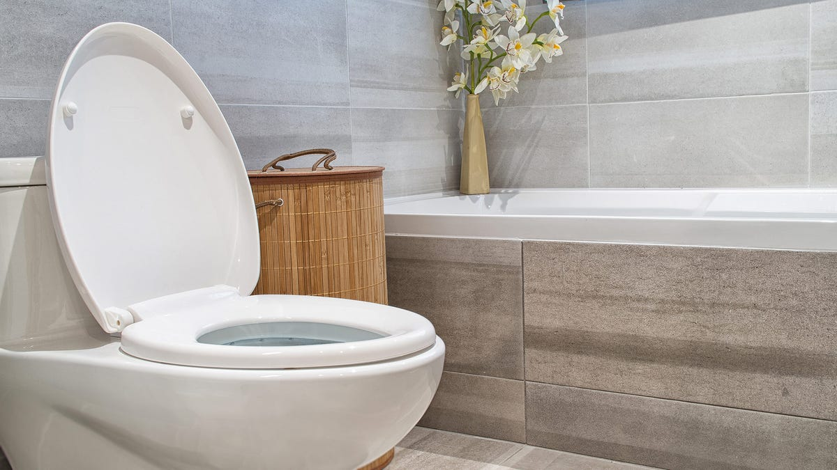 A brightly lit bathroom with a soaking tub and a white toilet.