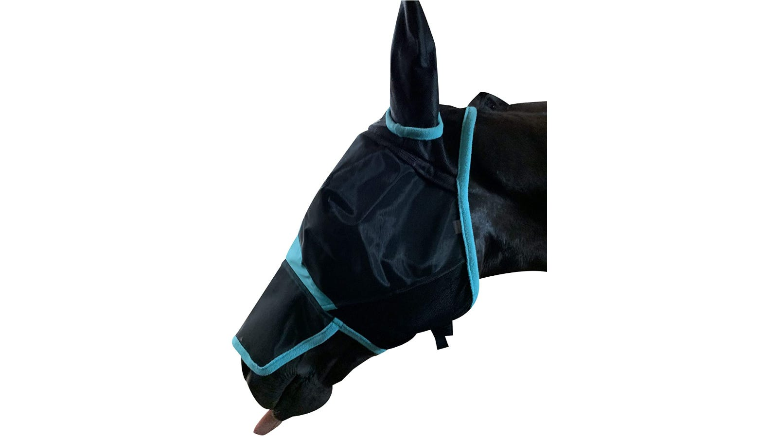 Black horse wearing a blue and black mask that covers the horse's face from its ears to its nose.