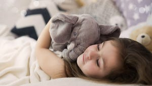 The Best Elephant Toys for Kids