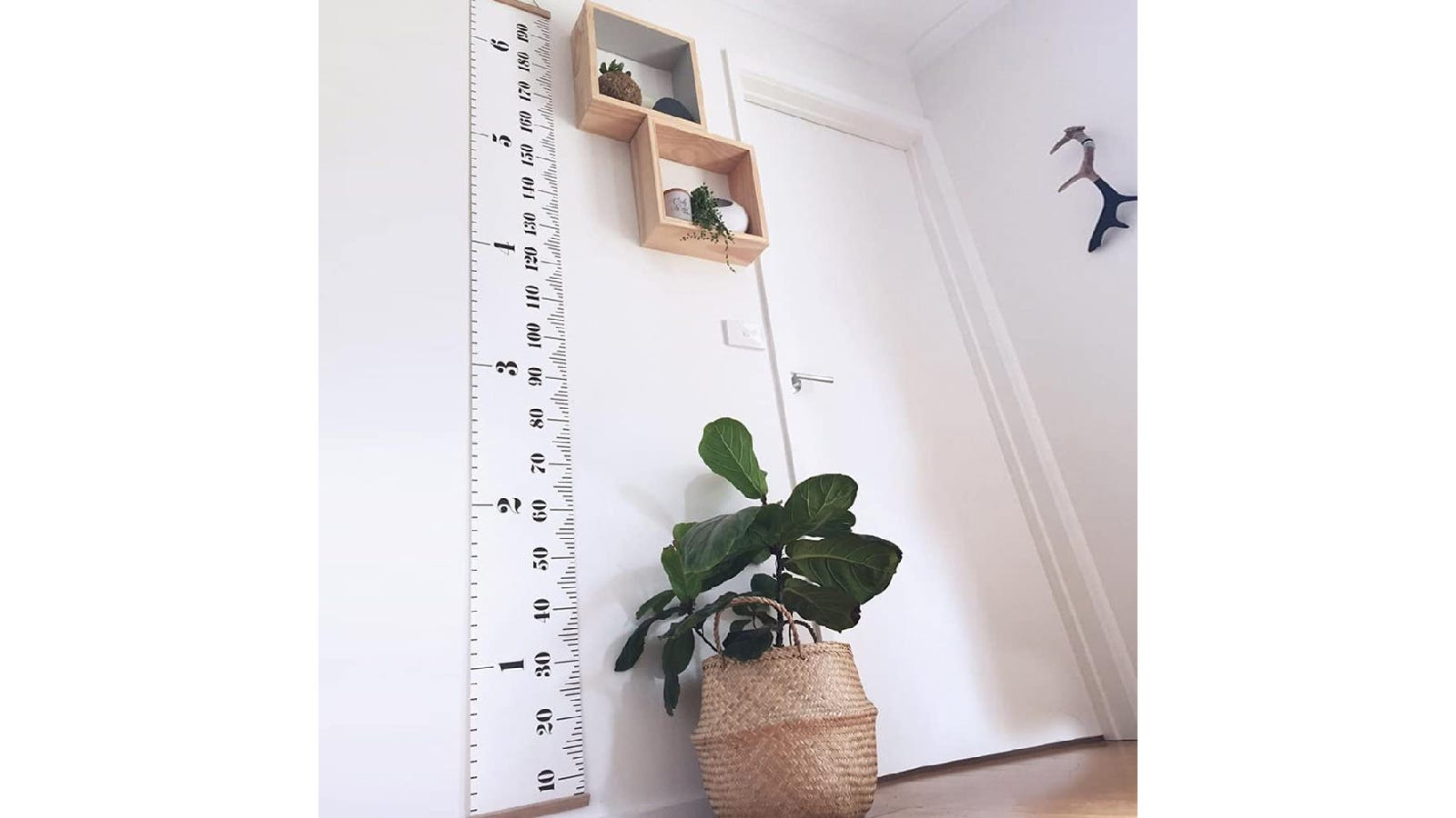 A white ruler growth chart next to a potted plant on the floor and two wooden shelves on the wall.