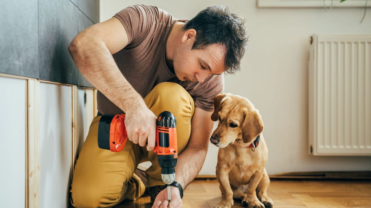 A man working on a DIY project with a drill as a a puppy watches.