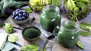 The Best Superfood Powders for Staying Healthy