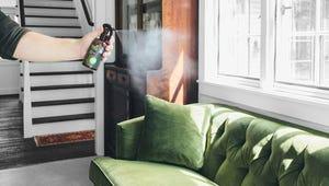 Effective Odor Eliminators for Your Home