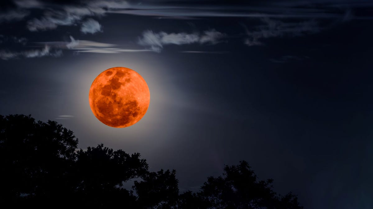 A red super blood moon in a night sky over a line of trees.