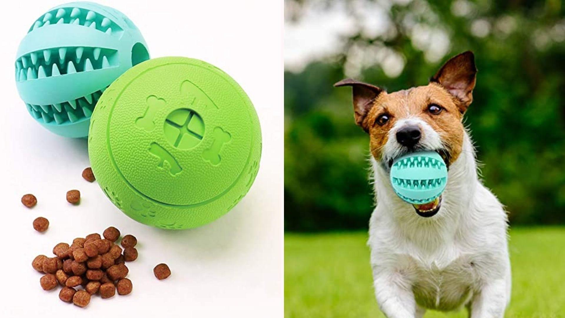 Слева - пазл с едой на белом фоне, а справа - счастливая собака, несущая пазл на улицу.