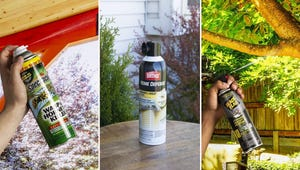 The Best Sprays for Eradicating Wasps