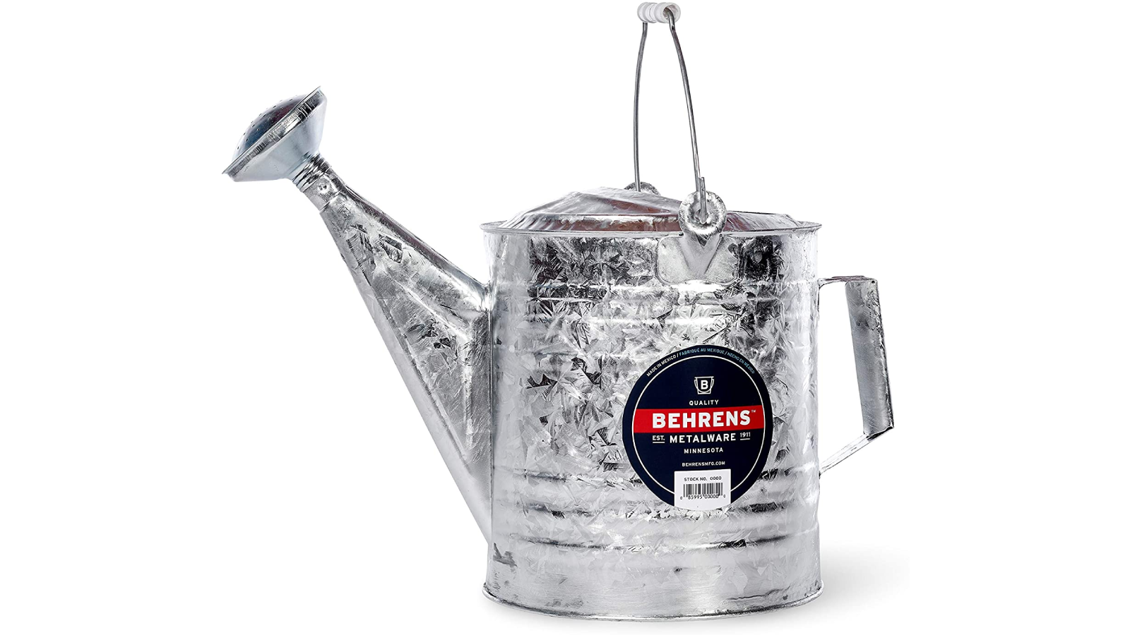 Stainless steel watering can with a side and top handle.