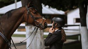 Choosing the Best Horse Riding Helmet