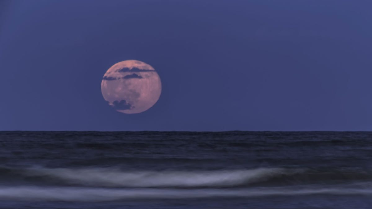 A full Strawberry Moon over the ocean.