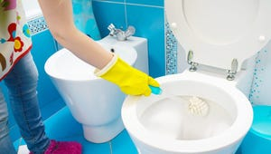The Best Toilet Brushes for Your Bathroom