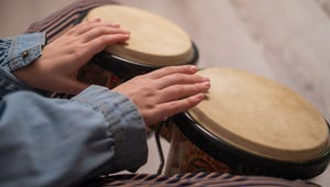 The Best Bongo Drums You Can Buy