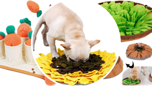 You Can DIY These Viral Snuffle Mats for Your Dog