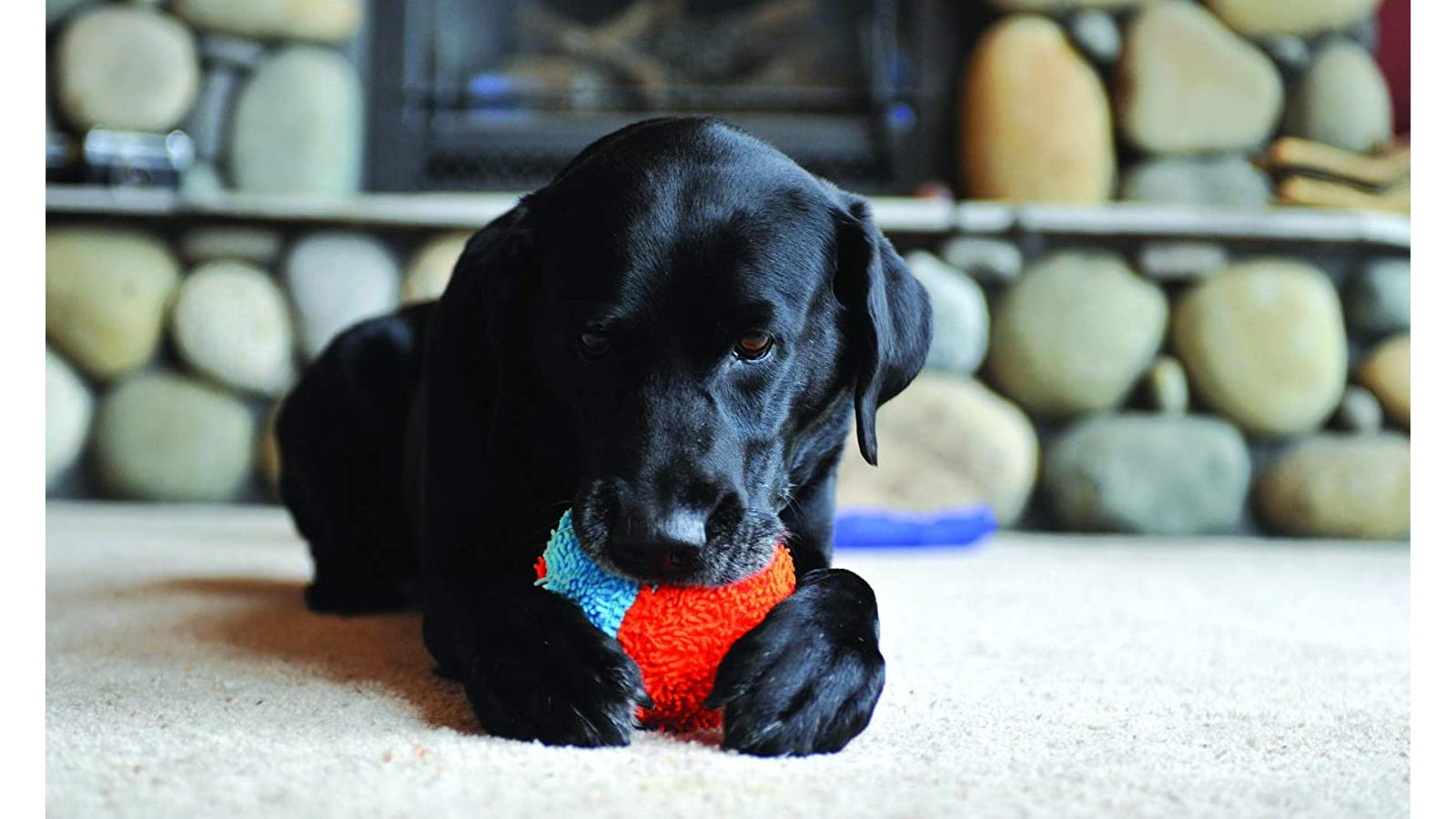 a puppy chewing on a plush ball