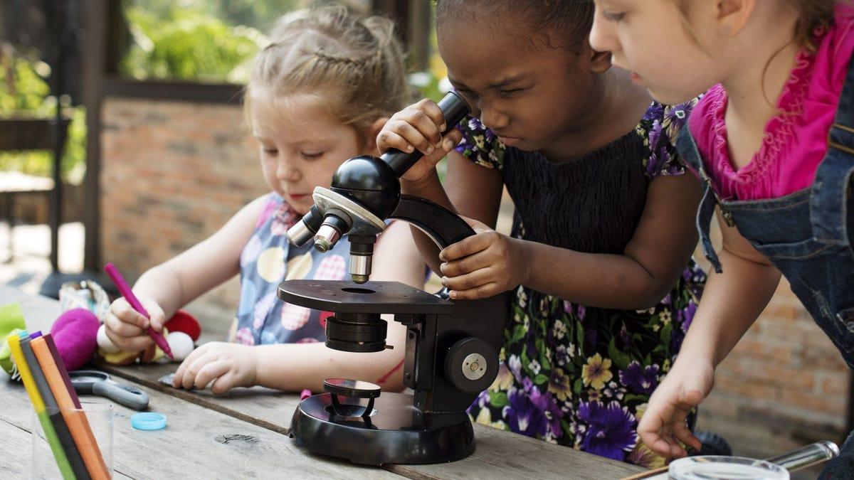 Three little girls gathered around a microscope.