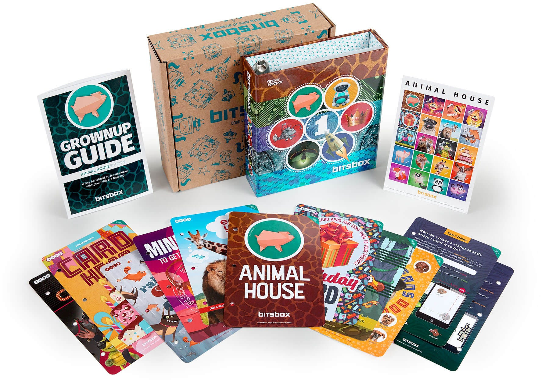 A BitsBox box with colorful coding cards fanned out in front of the box