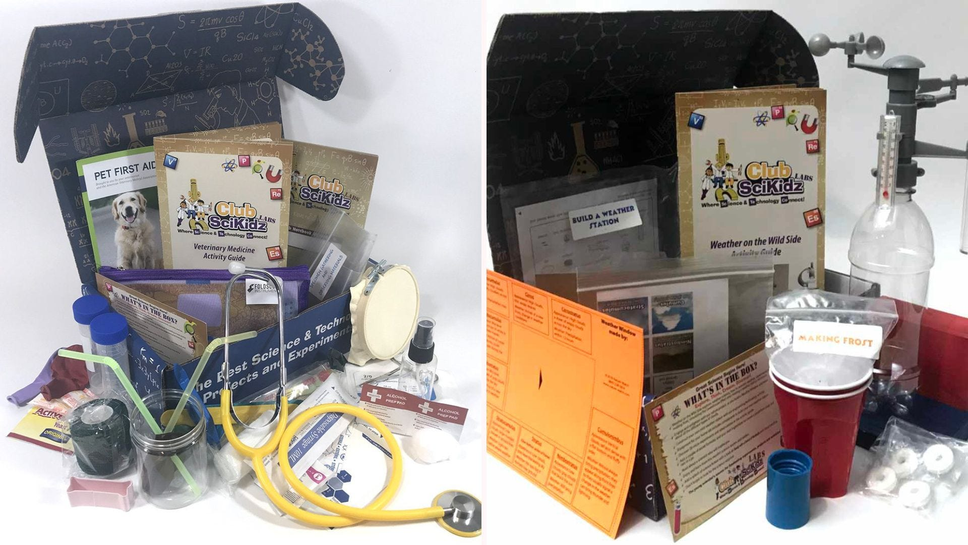 Science subscription boxes, themed around veterinary science and weather