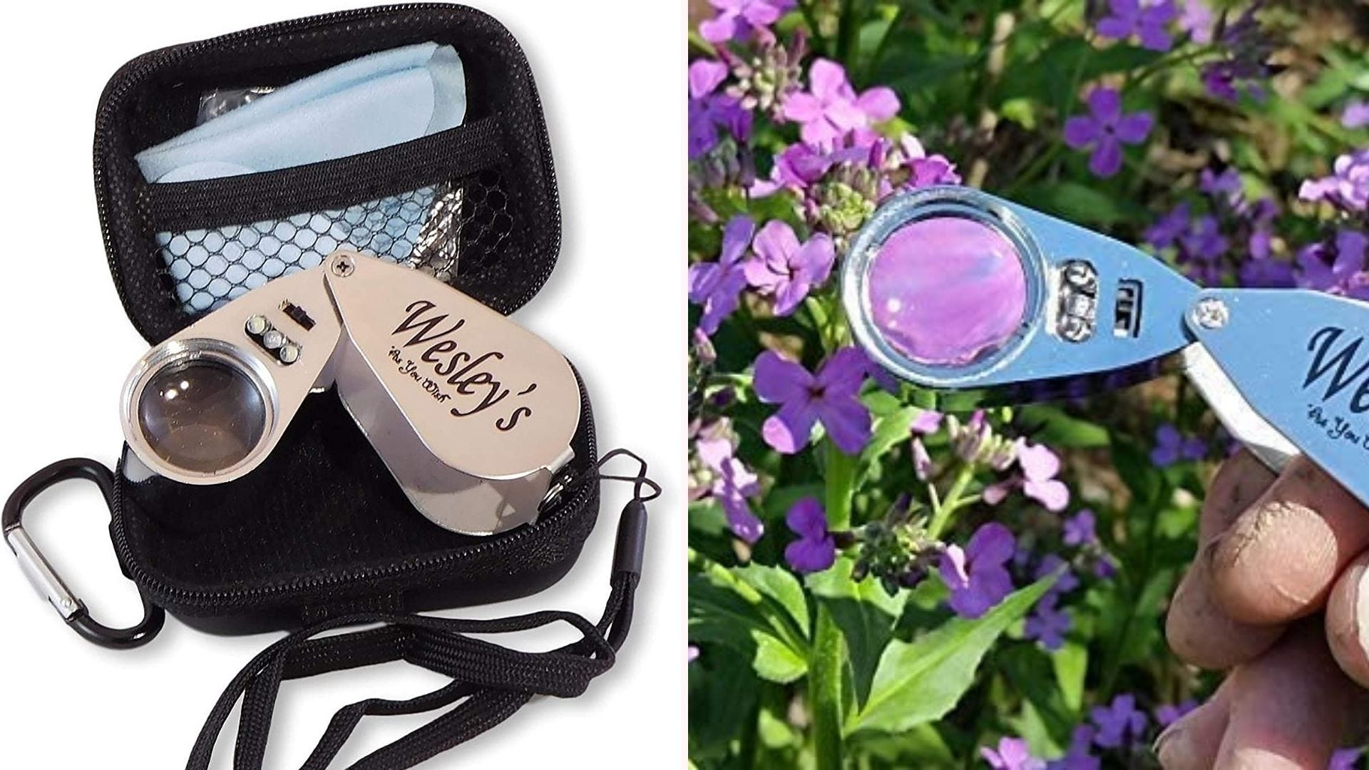 On the left, a collapsible hand lens with a 40x magnification lens sits in a travel pouch. On the right, the four-inch hand lens floats over a bed of purple flowers.