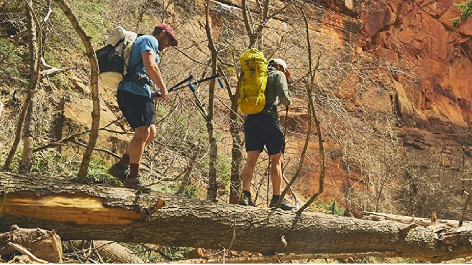 Two guys out on a hike, walking along a fallen tree with their grippy Merrell hiking shoes.