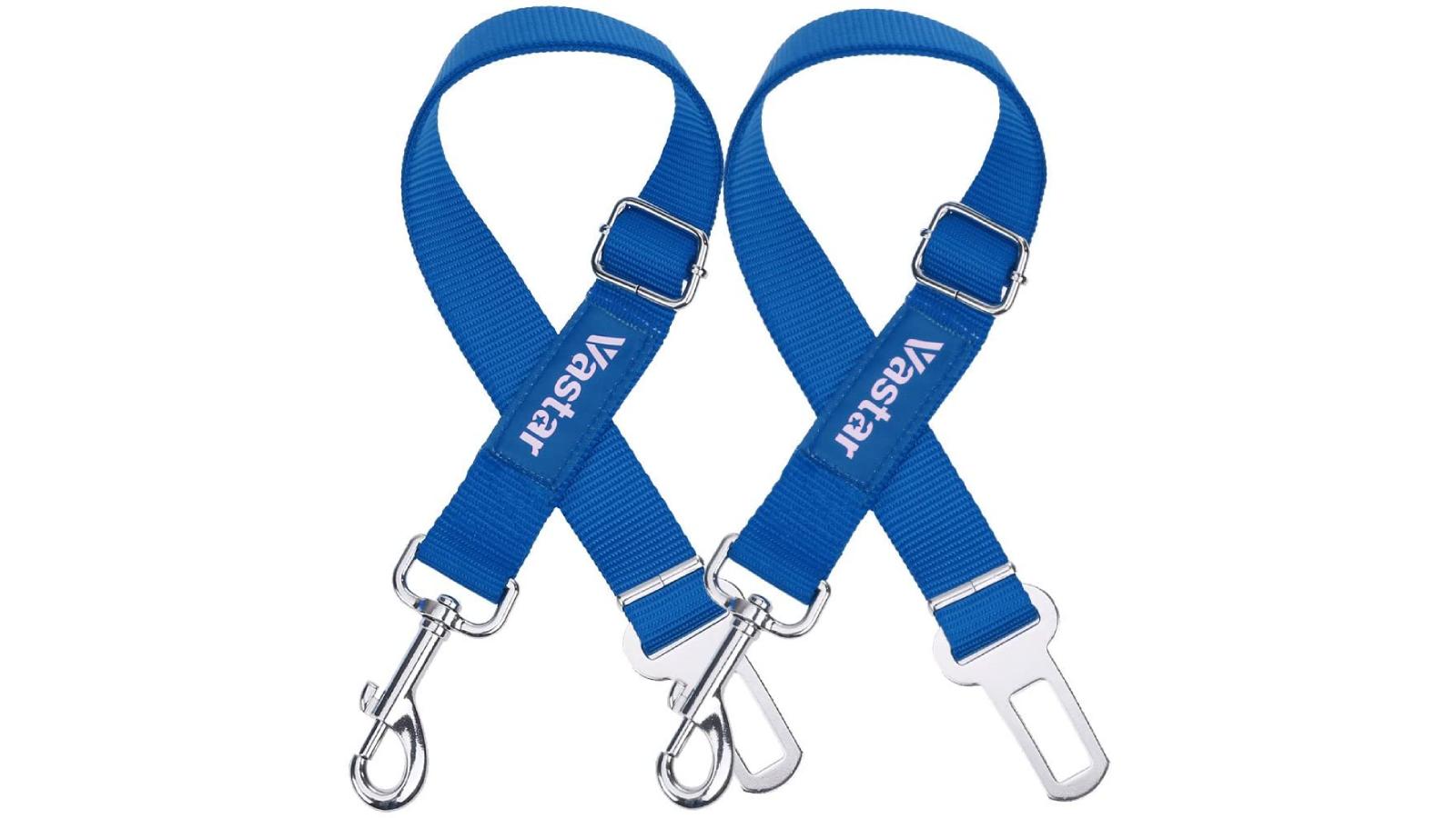 Two blue dog seatbelts.