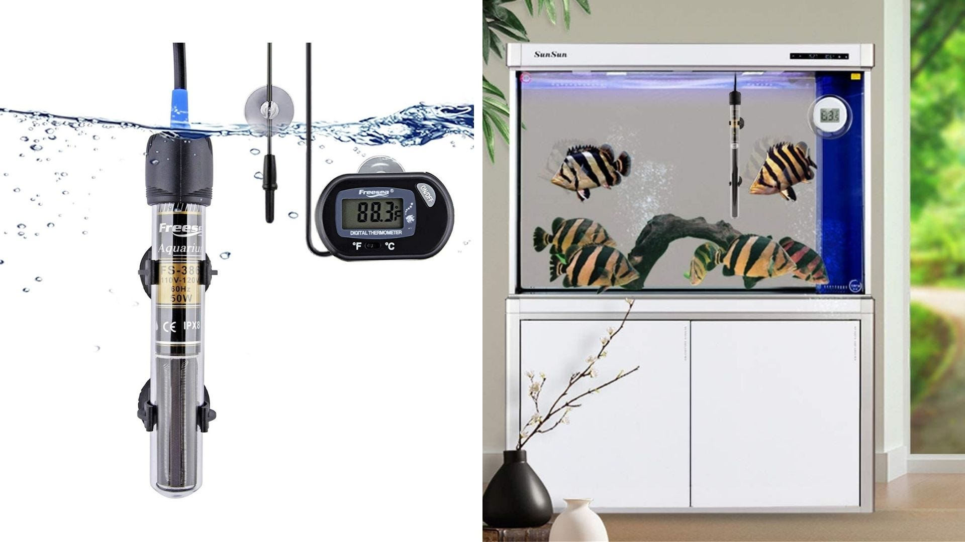 An aquarium heater and several fish swim in an aquarium