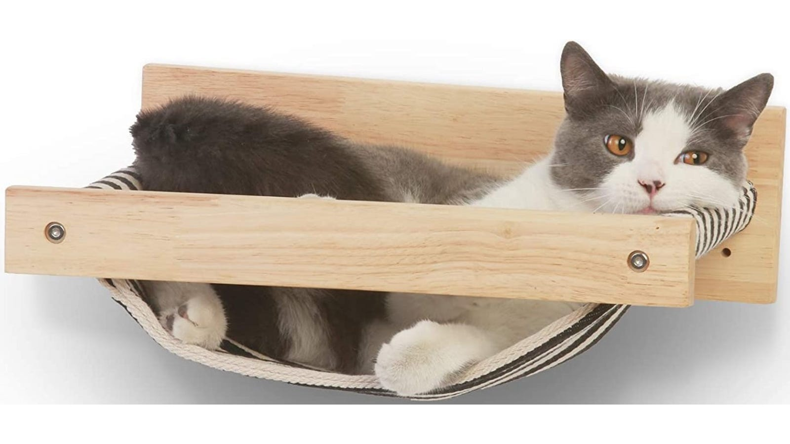 cat laying in a natural wood and striped fabric, wall mounted hammock