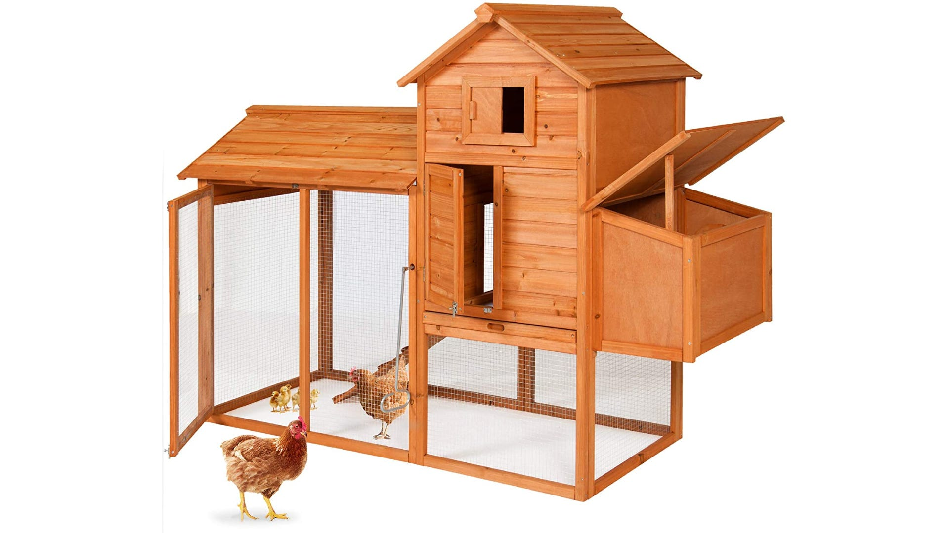 Wooden coop with a nesting box and housing two chickens and some young chicks.