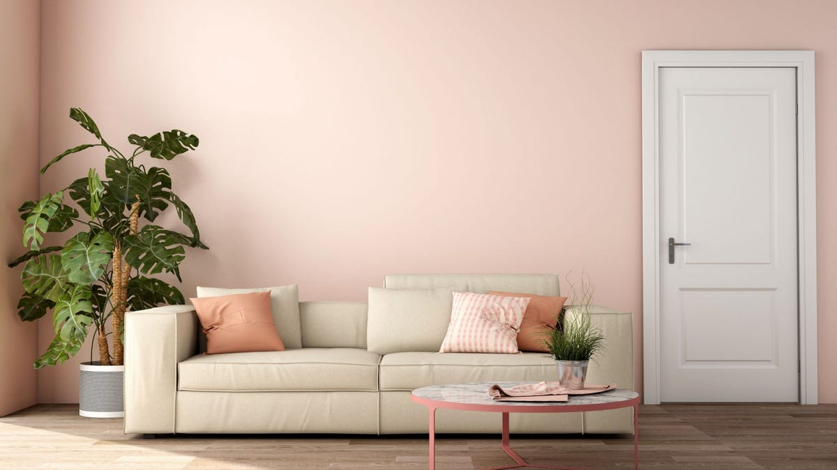 A pink wall in a living room.
