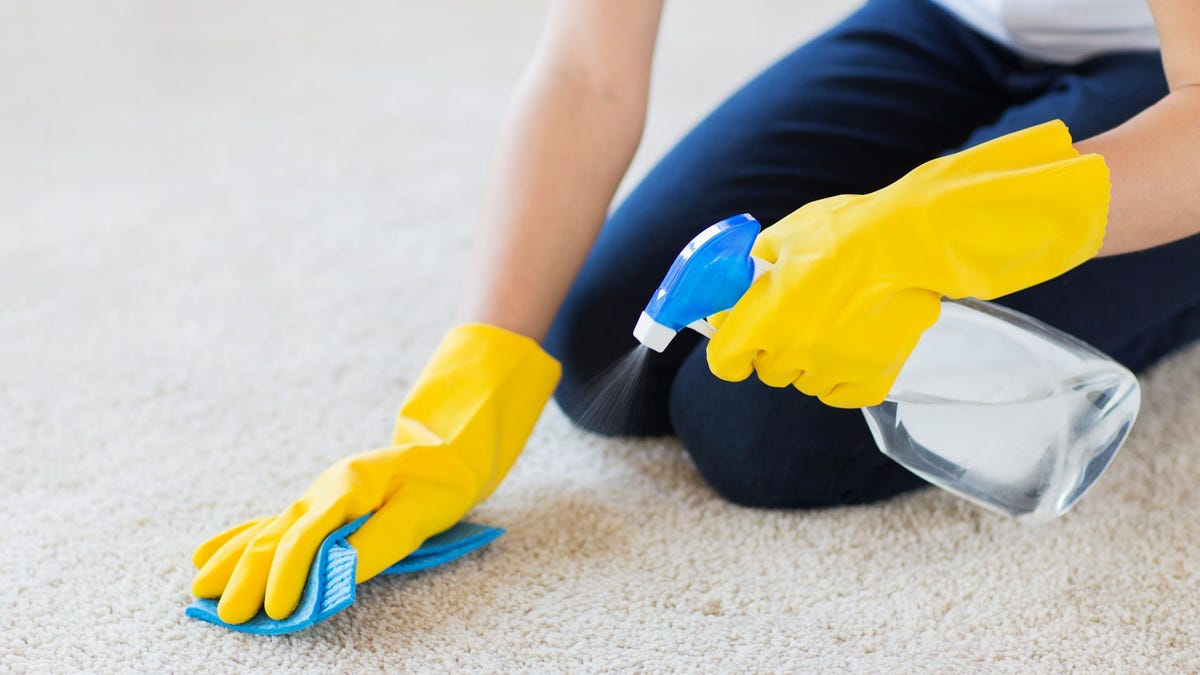 A woman wearing rubber gloves cleaning a carpet with a spray bottle and rag.