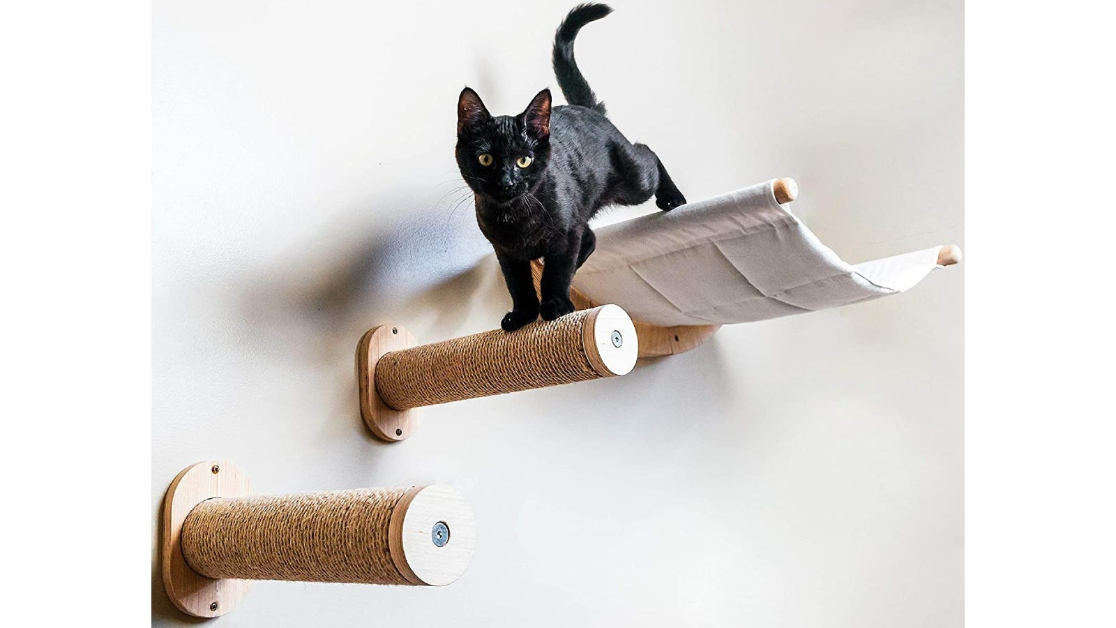 black cat walking down two round shelf steps with hammock in the back