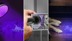 The Best Black Light Flashlights for Detection