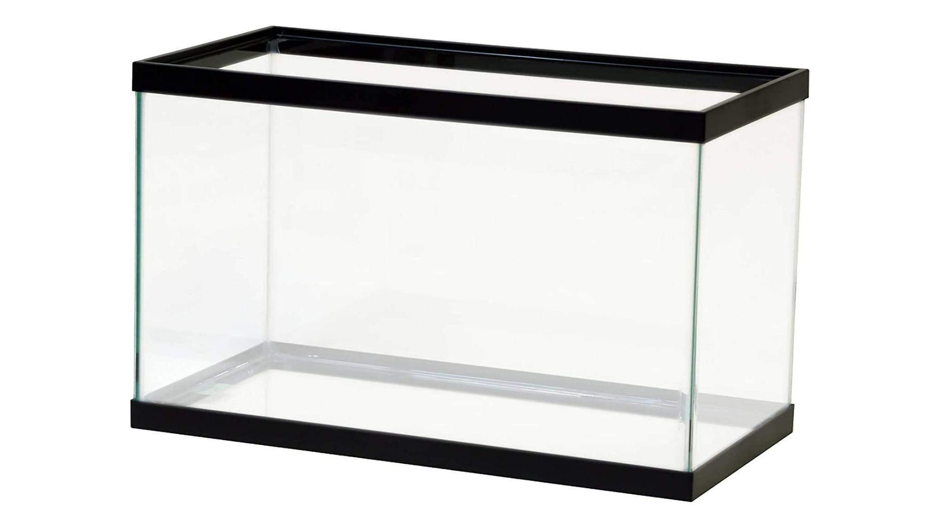 A large glass aquarium