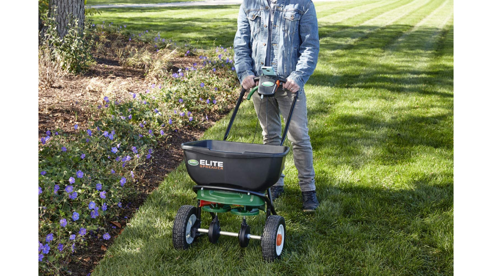 Man pushing a seed spreader in the garden