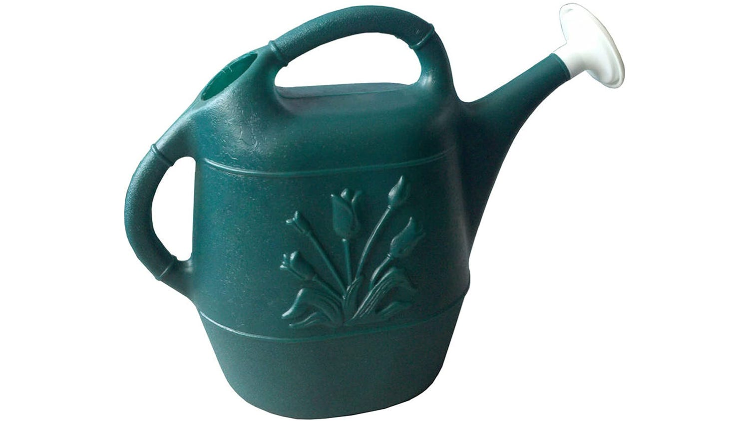 Hunter green watering can with tulip design.