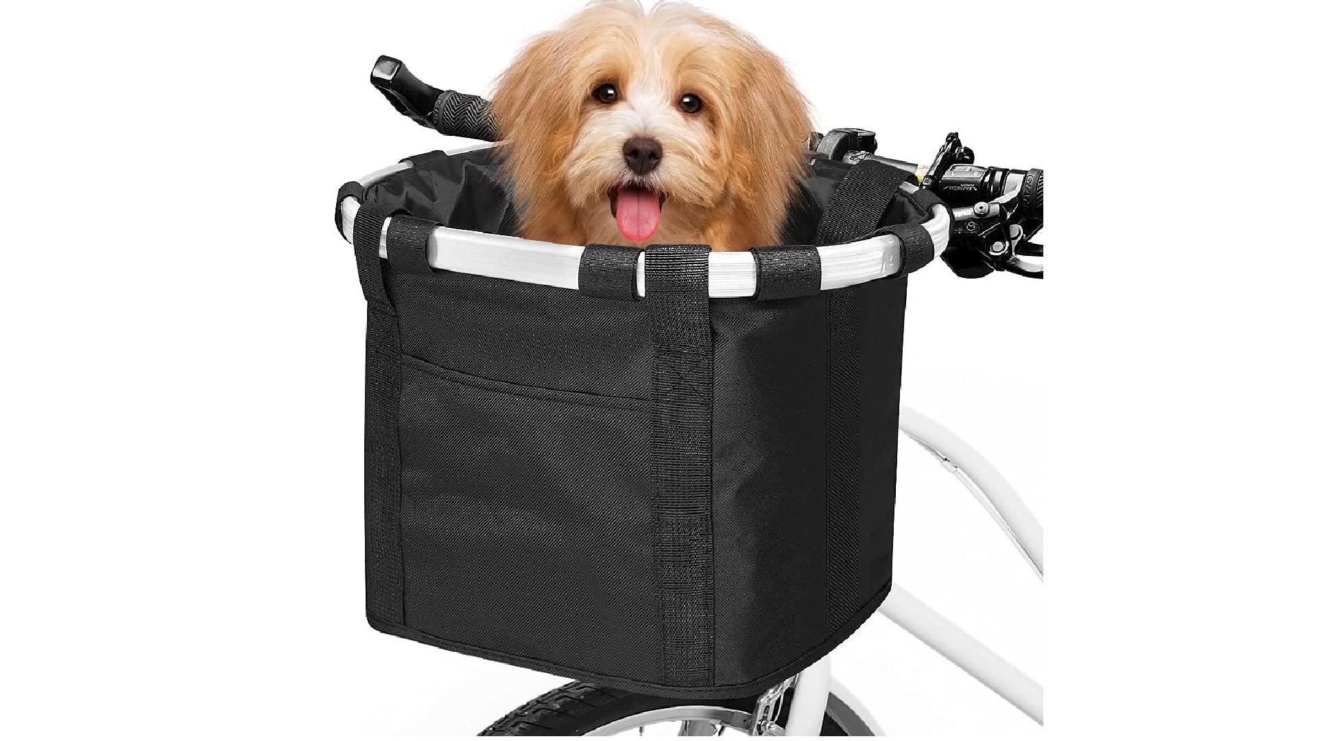a basket with reinforced metal bar and a dog inside of basket