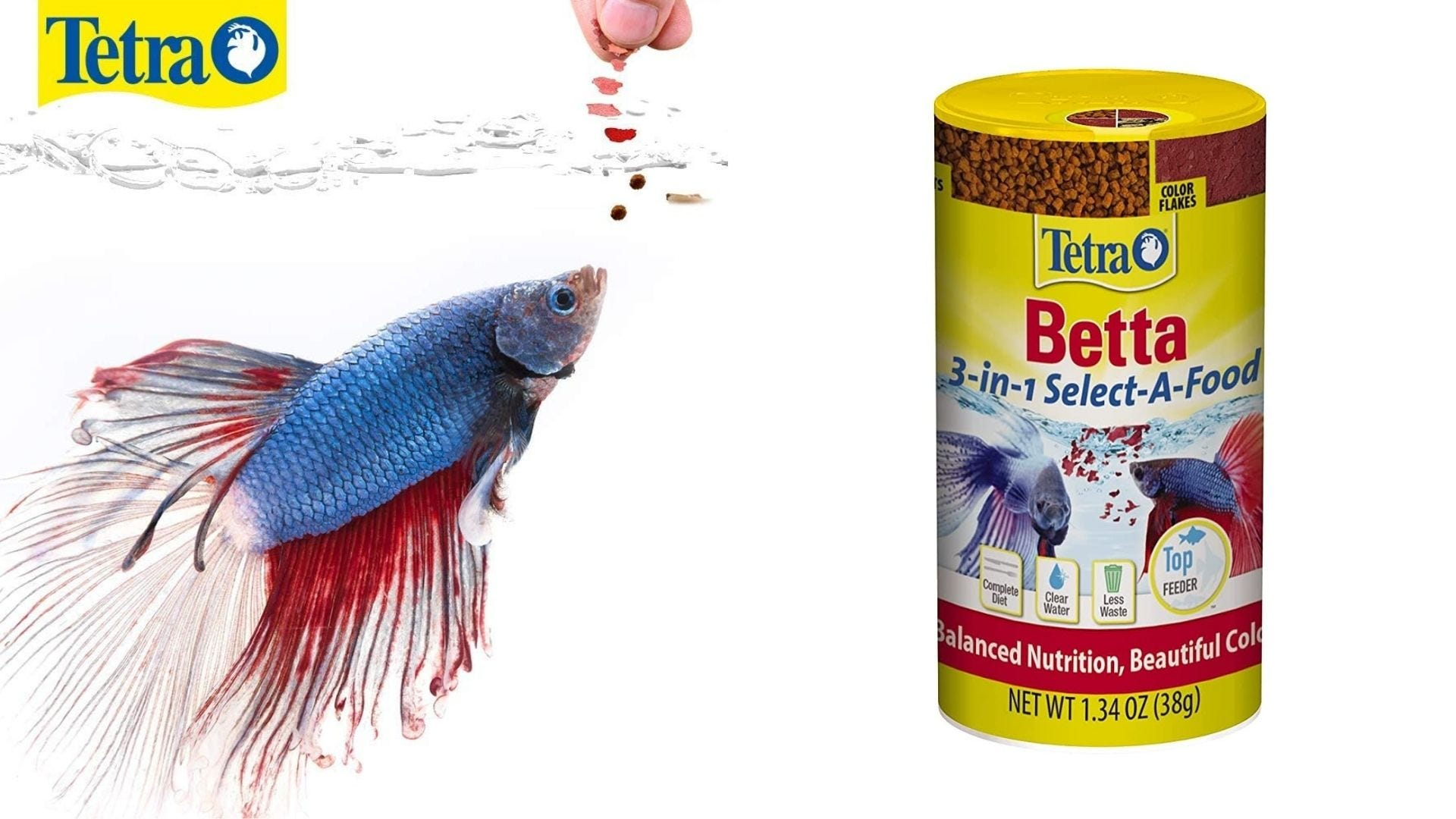 Someone feeds a Betta fish and a bottle of Betta fish food