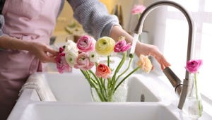 This Could Extend the Life of Your Fresh Cut Flowers