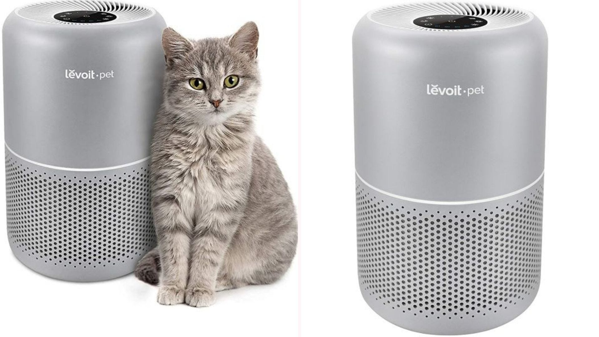 A gray tabby cat sitting next to the LEVOIT Pet Air Purifier.