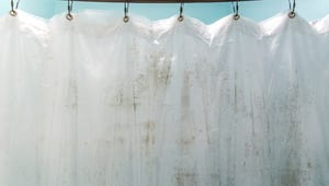 How to Save a Mildewed Shower Curtain