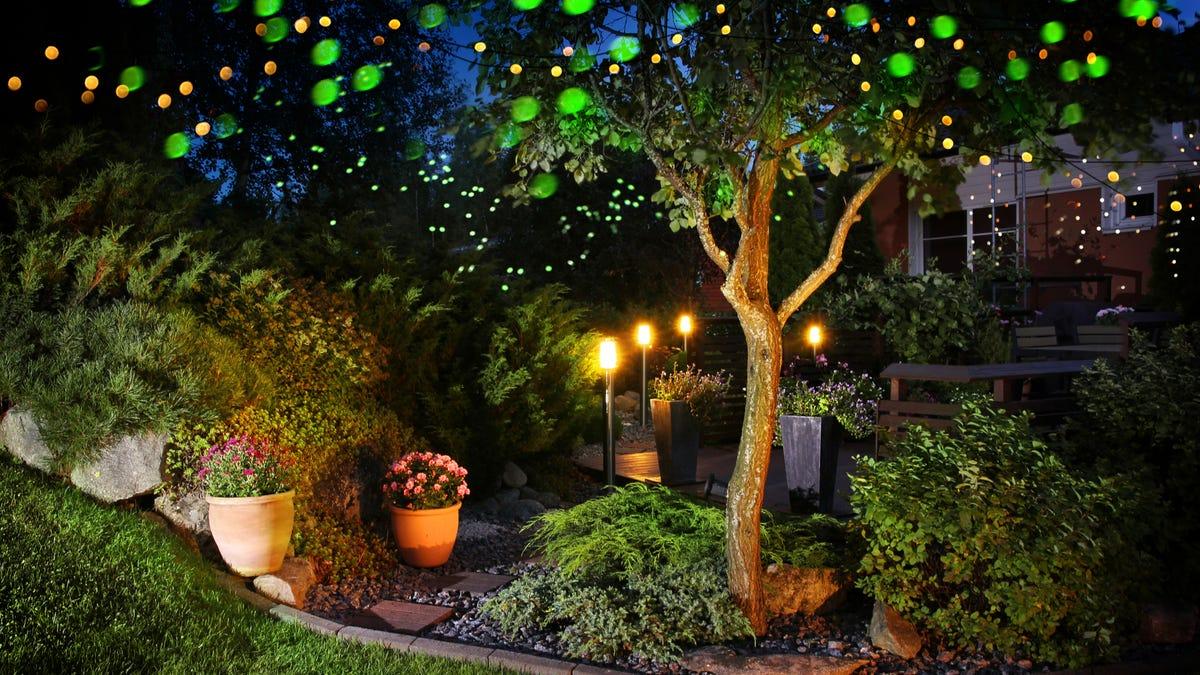 Lights illuminate a garden at night under the moonlight.