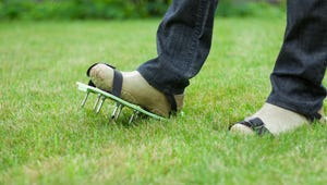 This Is the Easiest (and Cheapest) Way to Aerate Your Lawn