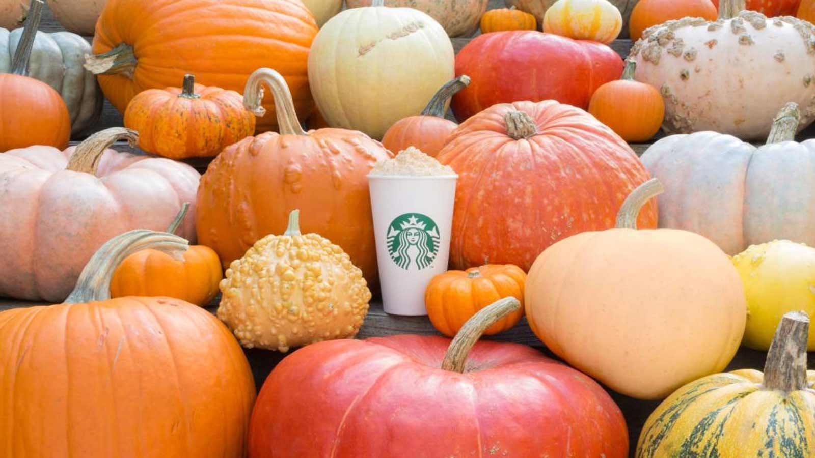 A pumpkin spice latte sitting among a bunch of pumpkins.