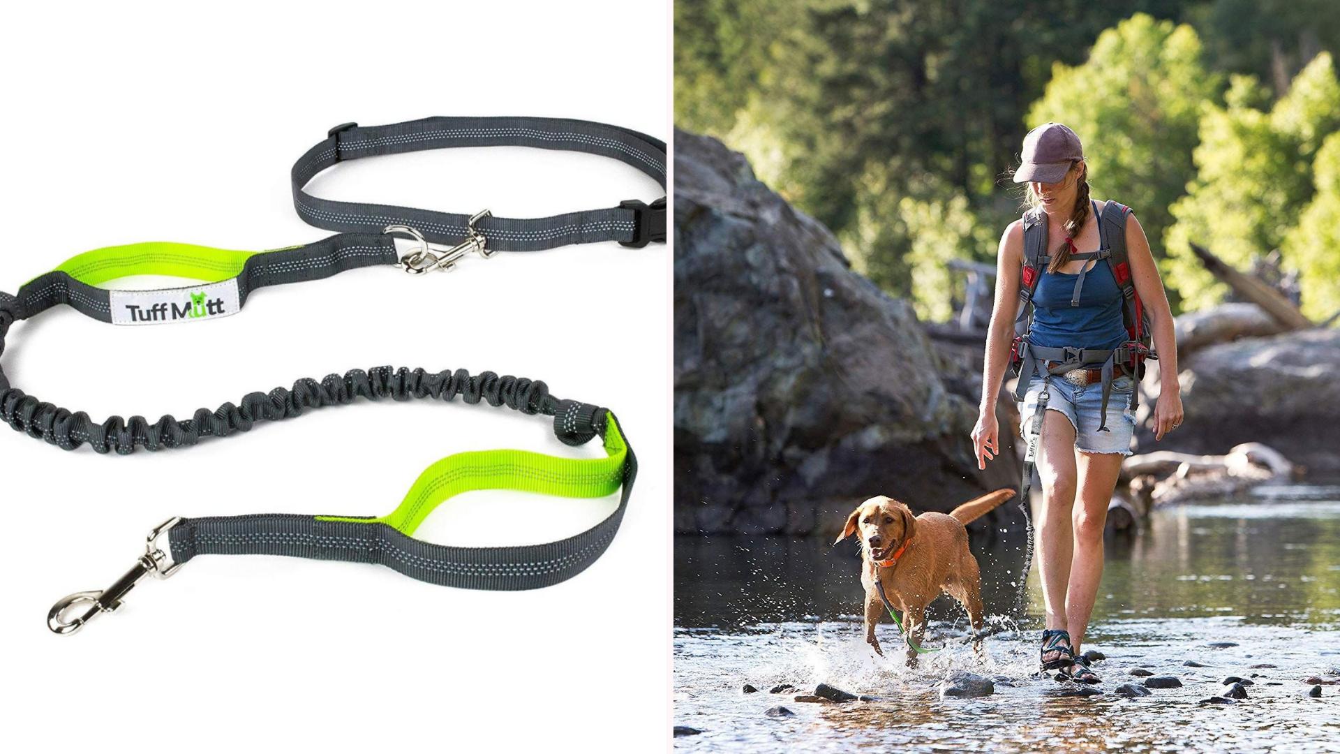 A walk hikes through a stream with a dog.