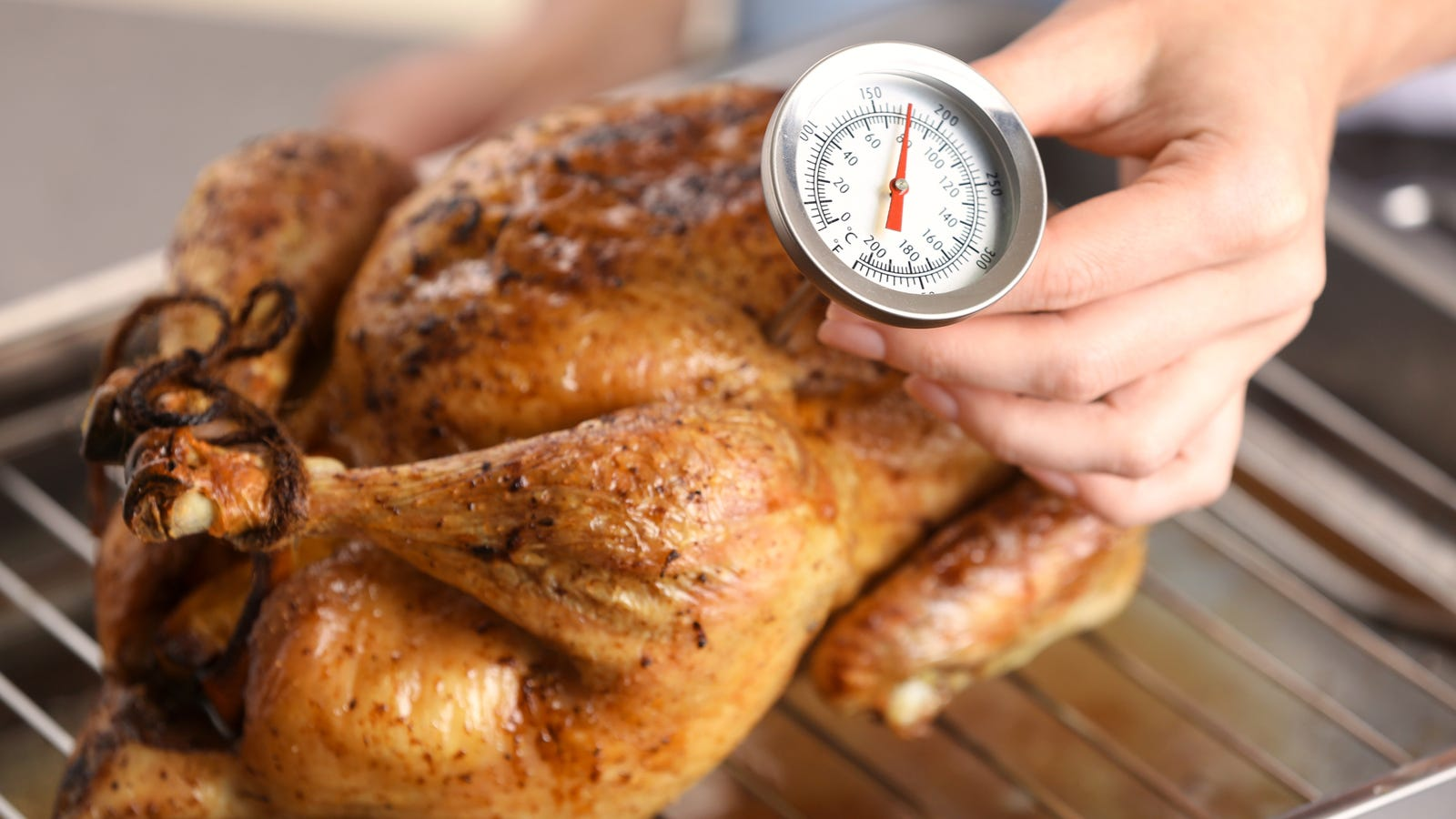 A person temping a roasted chicken, using an instant read thermometer.