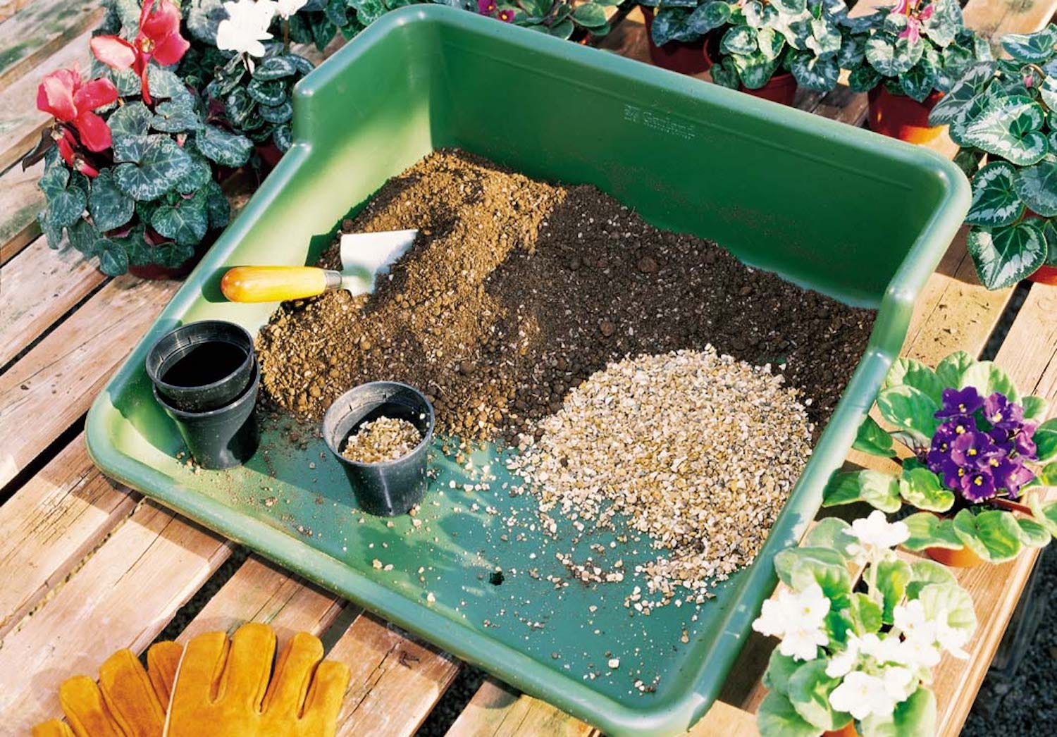 A green potting tray filled with dirt and other potting materials