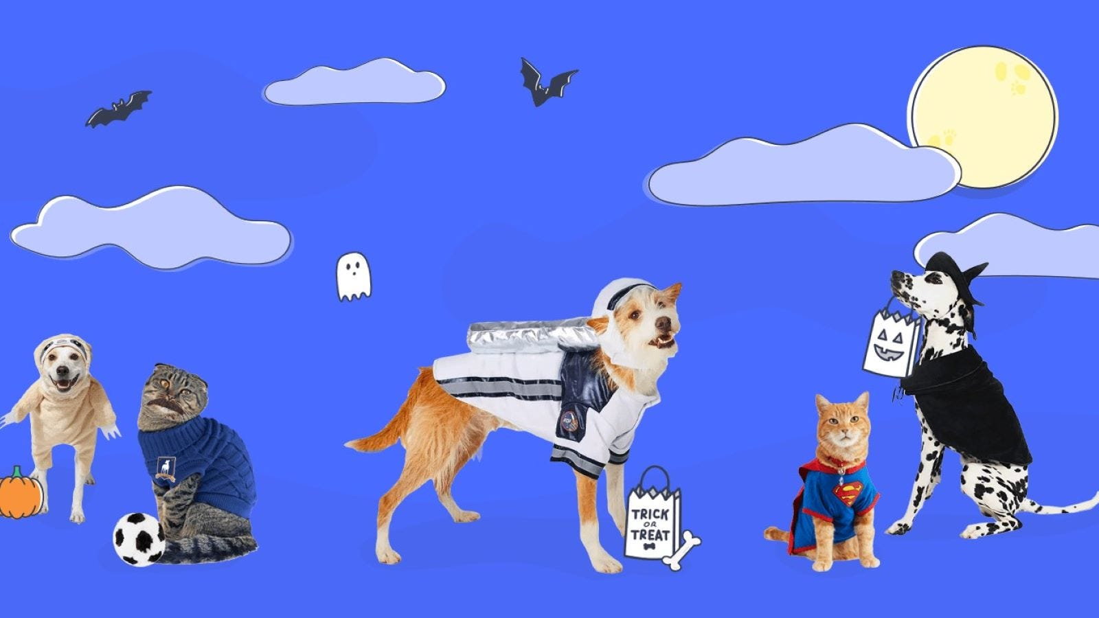 Dog and cats in various Halloween costumes.