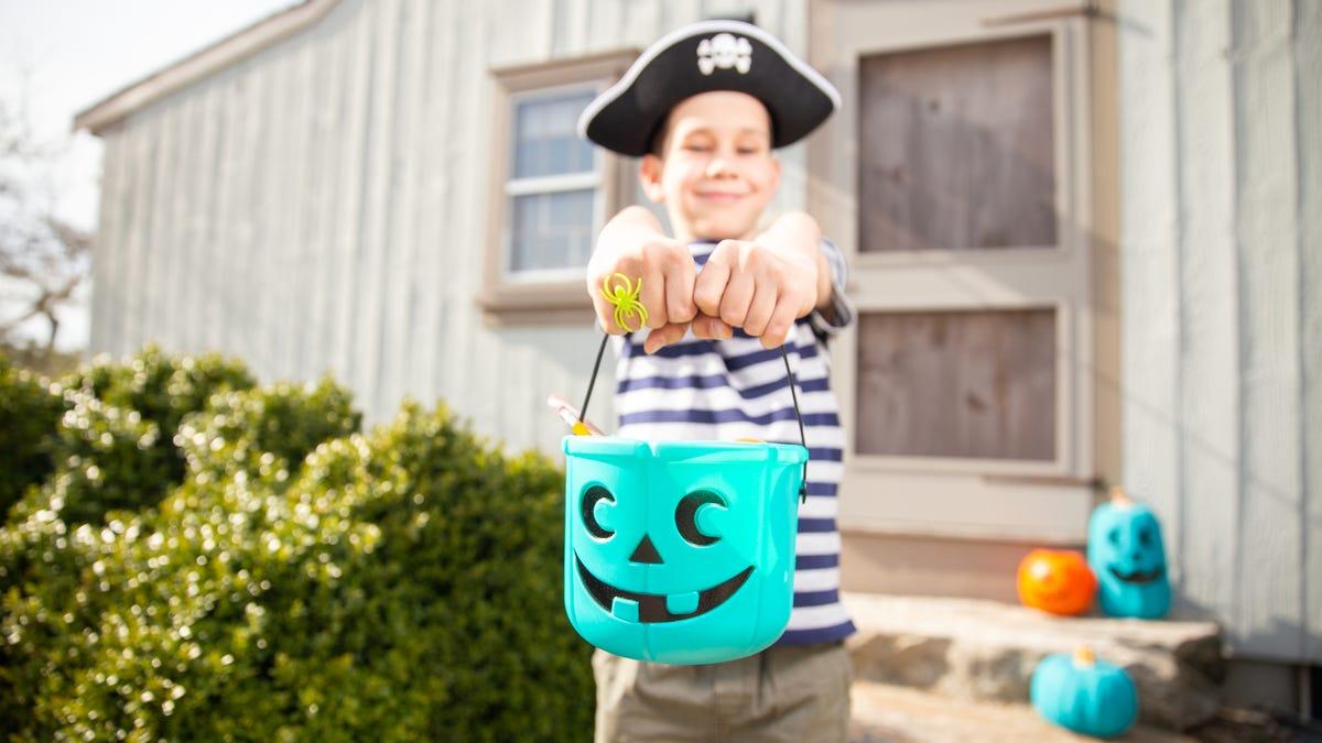 A boy dressed as a pirate holds a teal pumpkin pail.