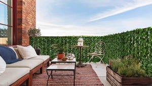 The Best Privacy Screens for Your Fence